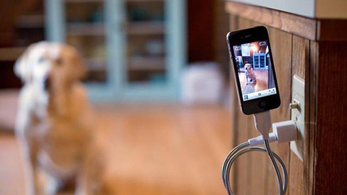 Пять запрещенных действий со смартфоном на зарядке: эксперты перечислили главные запреты