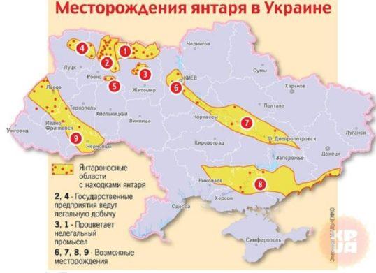 Над Західною Україною нависла страшна катастрофа: екологи вимагають звернути увагу на те, що відбувається