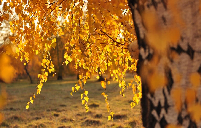 Праздник 19 сентября: Михайлово чудо – важный день для всех христиан