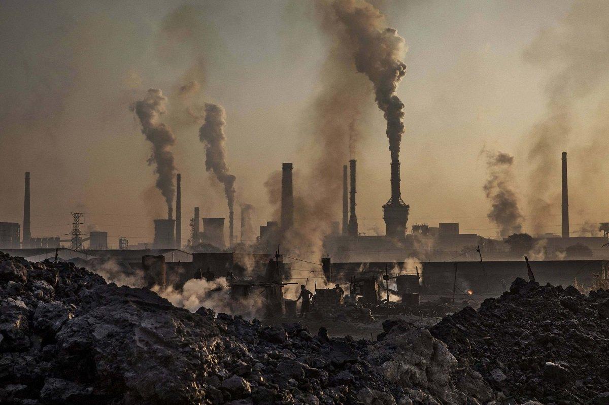 Вчені назвали продукт, який повинні їсти жителі забруднених міст