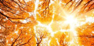 """Потепління не за горами: синоптики розповіли, коли відступлять холоди"""" - today.ua"""