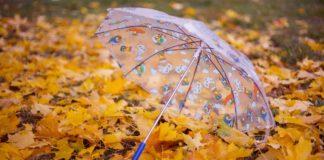 """Різке похолодання, дощі та грози: синоптики розповіли про погоду на другу половину вересня"""" - today.ua"""