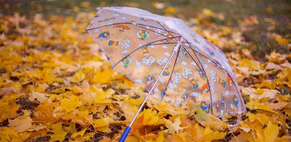 Резкое похолодание, дожди и грозы: синоптики рассказали о погоде на вторую половину сентября - today.ua