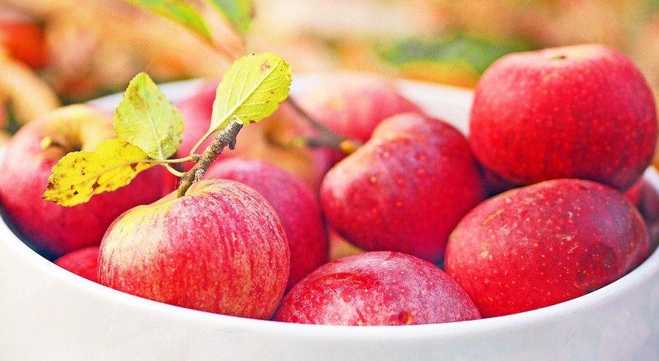 Пора запасатися на зиму: в Україні різко подешевшали яблука