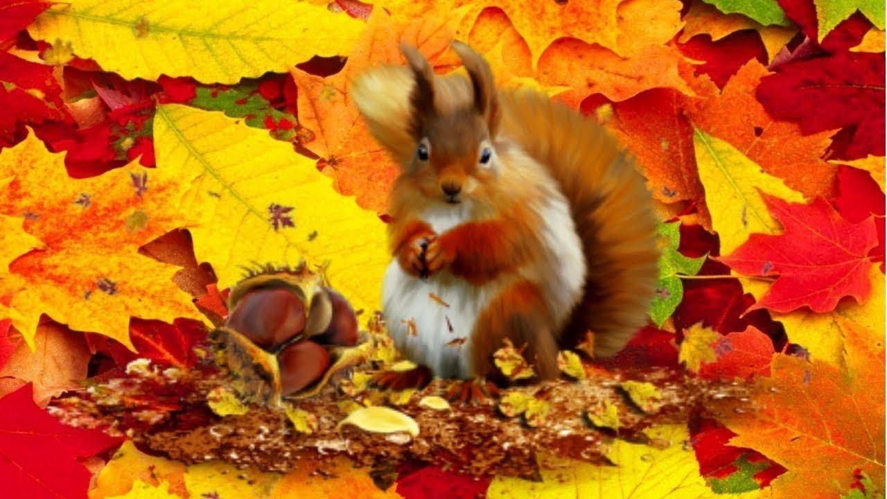 Праздник 4 октября: чтобы разбогатеть, Кондратьев день следует хорошенько поработать