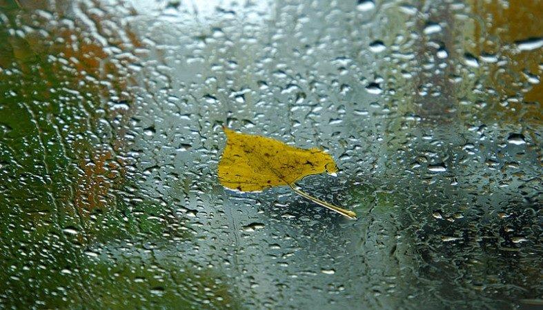 Шквальный ветер и дожди: прогноз погоды для Украины от Наталки Диденко