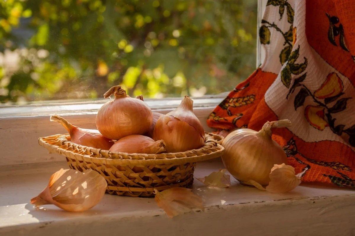 Праздник 31 октября: в канун Хэллоуина отмечают таинственный Луков день