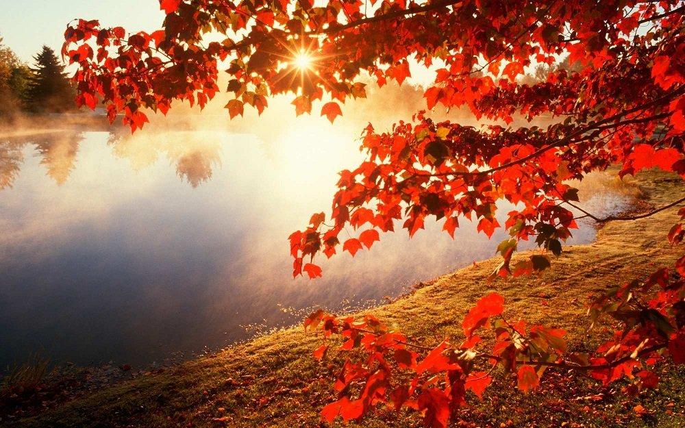 Праздник 3 октября: в день Астафия Ветряка исполняются все желания