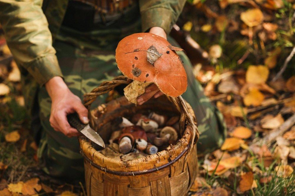 Праздник 14 октября: главные традиции Покрова Пресвятой Богородицы