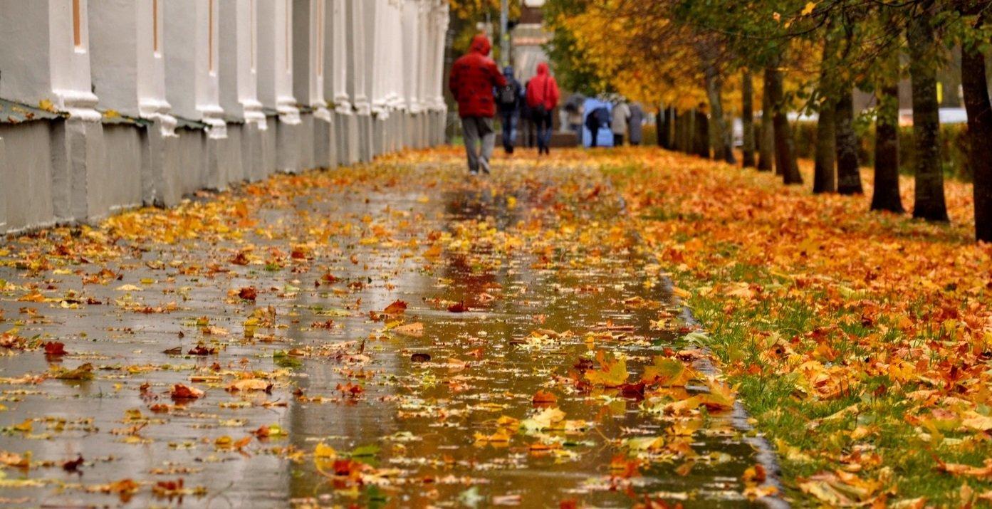 В ноябре в Украину вернется жара: прогноз погоды на конец осени от Укргидрометцентра