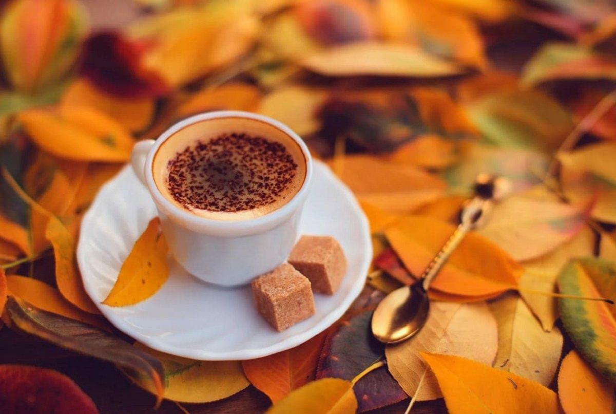 Свято 24 жовтня: народні прикмети і традиції в день святого Філіпа