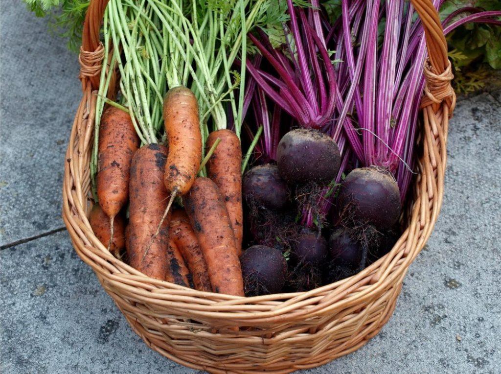 """Овощи из """"борщевого набора"""" в октябре существенно упали в цене"""