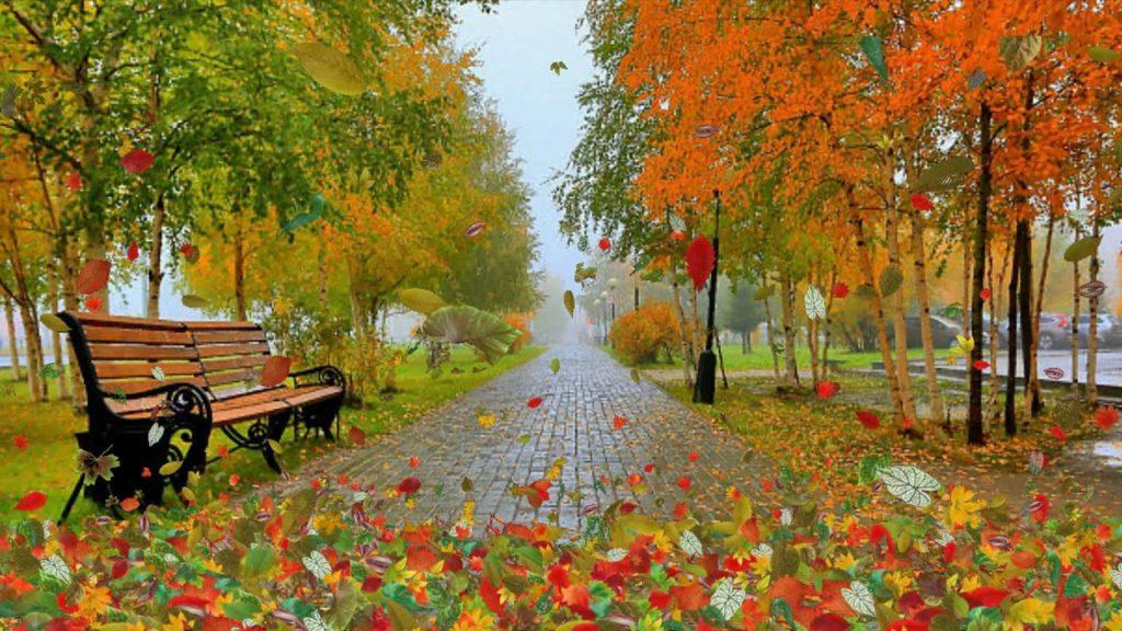 Свято 20 жовтня: чому в день Сергія Печерського жінкам потрібно покривати голову і відмовитися від випічки