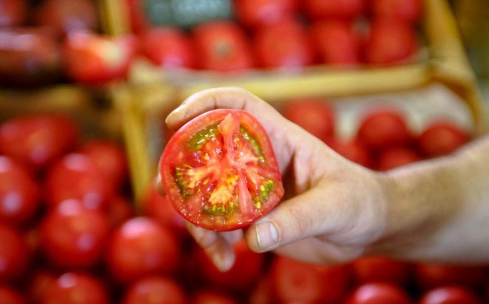 В Украине рекордно подорожали помидоры: аграрии назвали причины