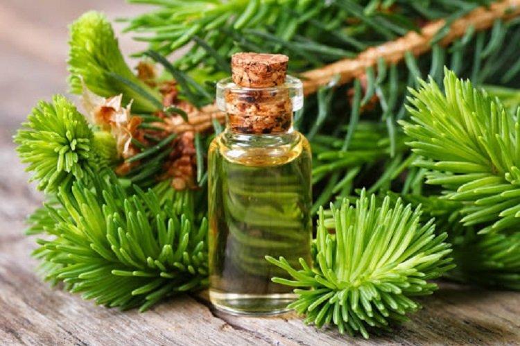 Ученые назвали эфирные масла, которые уничтожат вирусов и бактерий в помещении