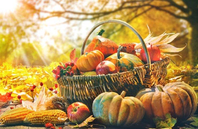 Праздник 4 ноября: в День Казанской Божией Матери молились о заробитчанах