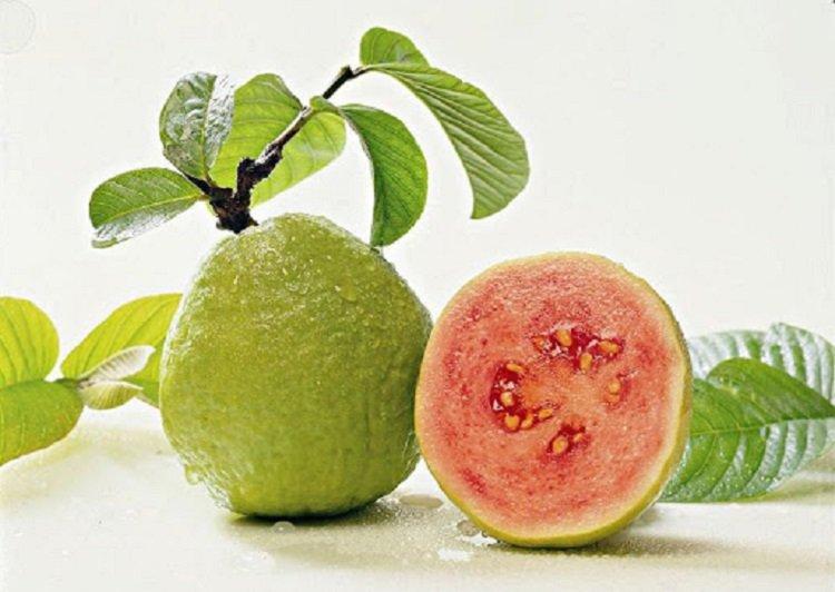Фрукти для здоров'я легенів: які плоди потрібно їсти для профілактики пневмонії