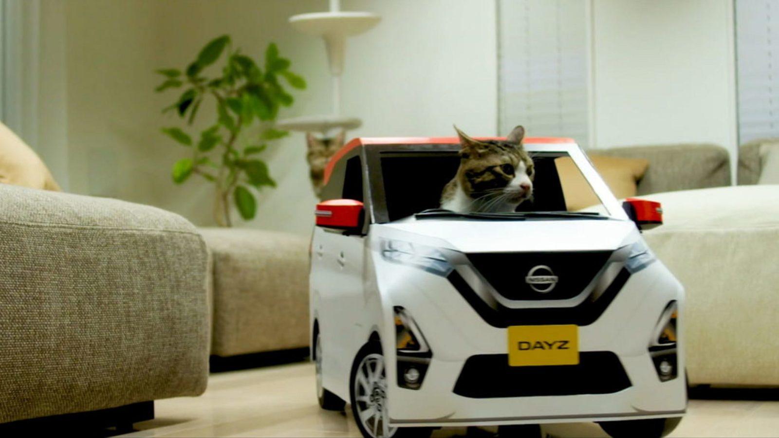 Nissan випустив автомобілі для котів