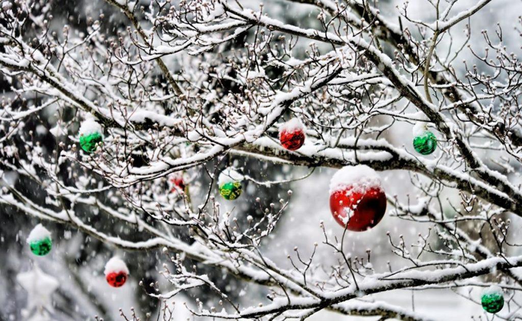 Погода в Україні на Новий рік: народний синоптик розповів, чи чекати снігу