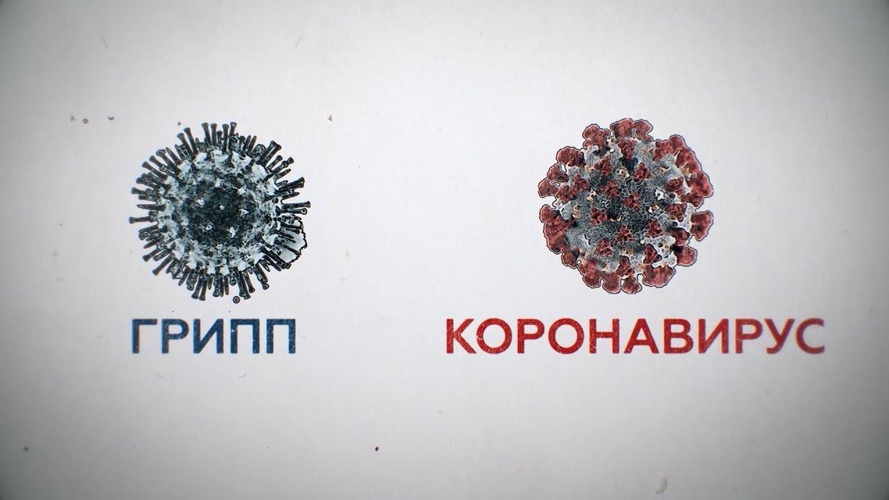 Вірусологи розповіли, чи можна заразитися грипом і COVID-19 одночасно