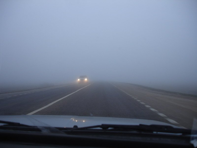 Штормове попередження для Києва: густий туман насувається на столицю, водіїв просять бути обережними