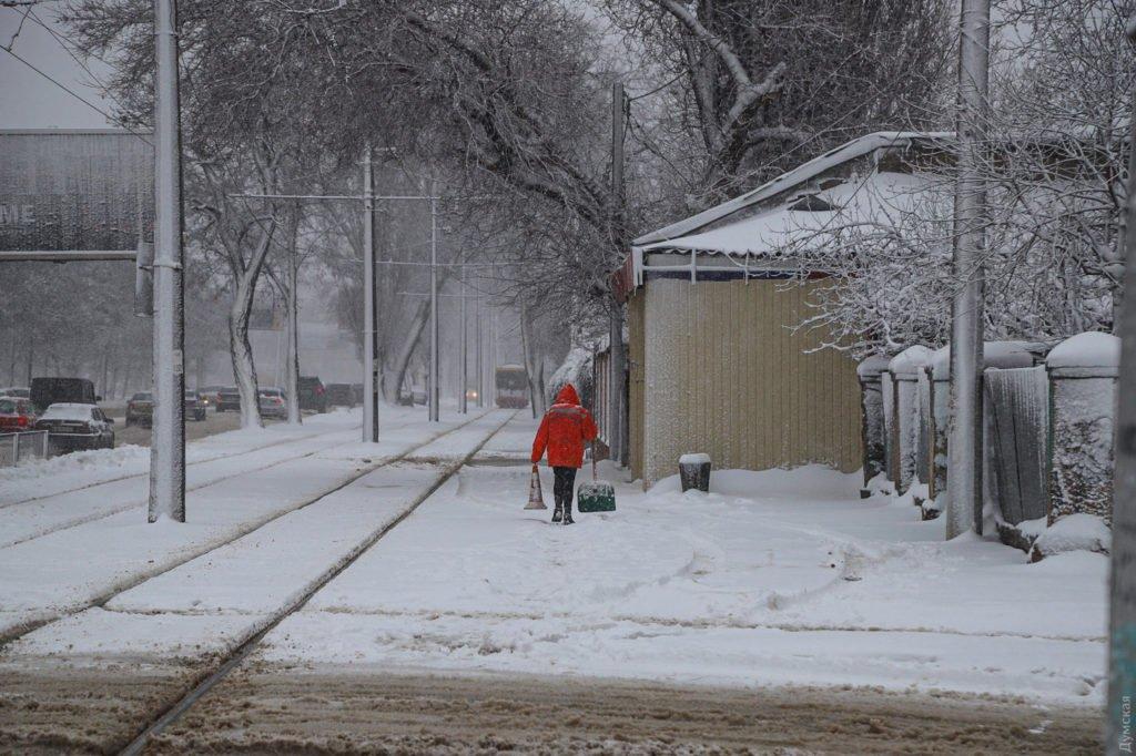 Одессу засыпало снегом: сильный ветер повалил деревья, на дорогах пробки
