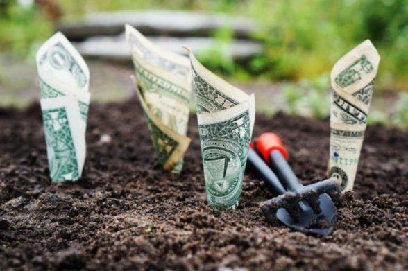Цена на землю в Украине осенью снизится: эксперты считают, что в начале рынка у владельцев паев завышены ожидания - today.ua