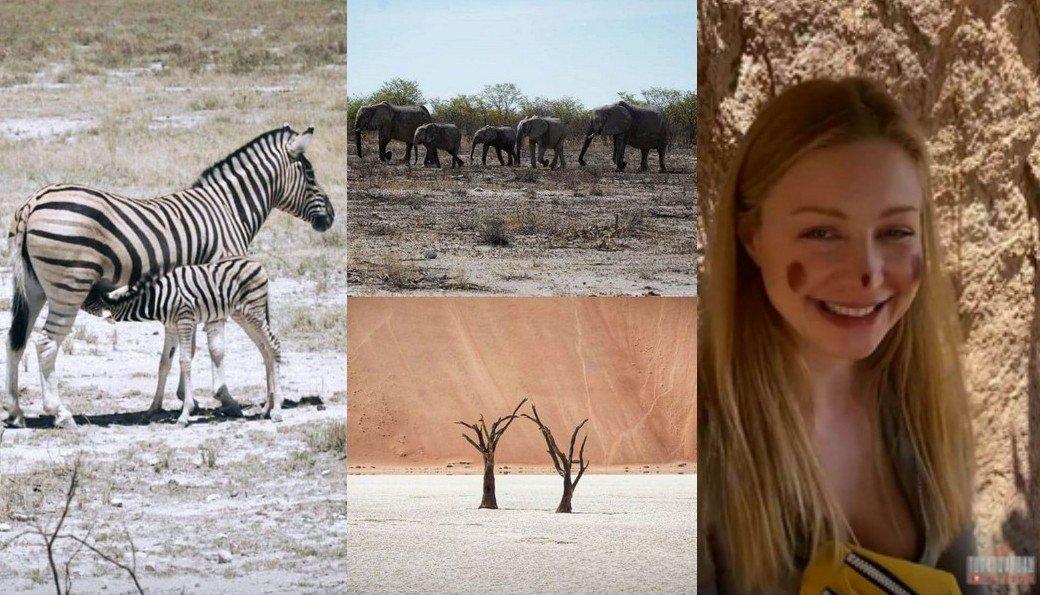 Тіна Кароль показала небезпечні кадри з Африки