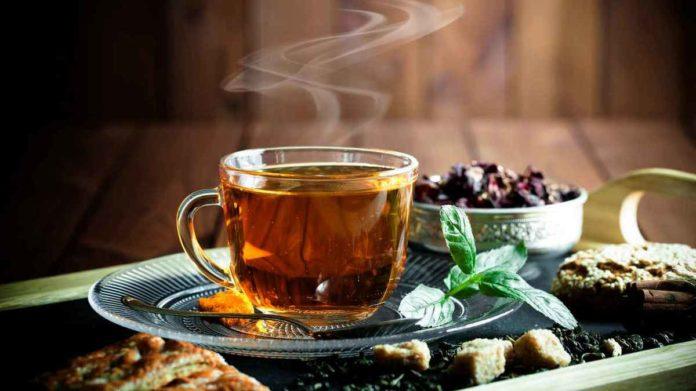 белка пьет чай