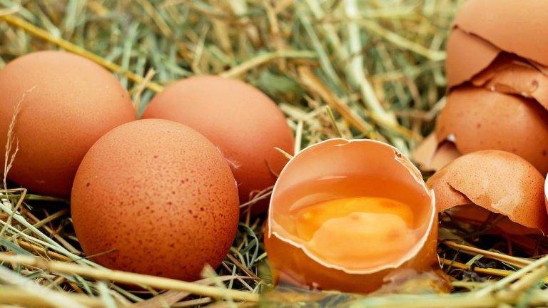 Аналітик пояснив, чому в Україні дорожчають яйця, і причому тут США