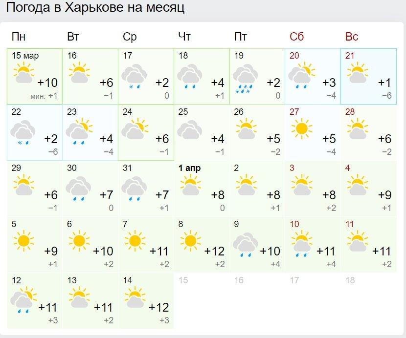 В Україні нарешті потеплішає: синоптики розповіли, коли чекати весняної погоди