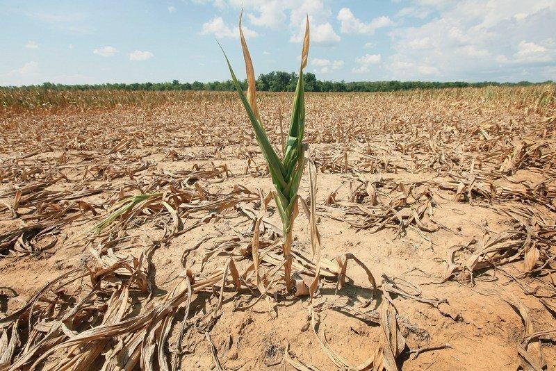 В Україні закінчується питна вода: незабаром її доведеться купувати за кордоном