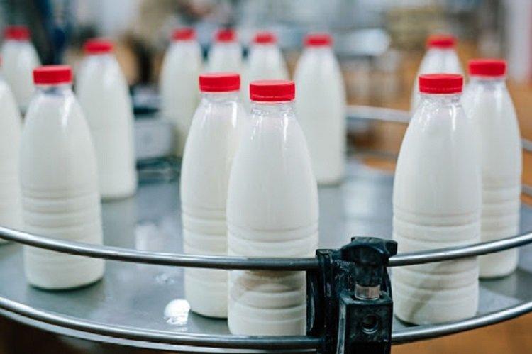 Україна знижує обсяги виробництва молочної продукції та нарощує імпорт сирів і йогурту