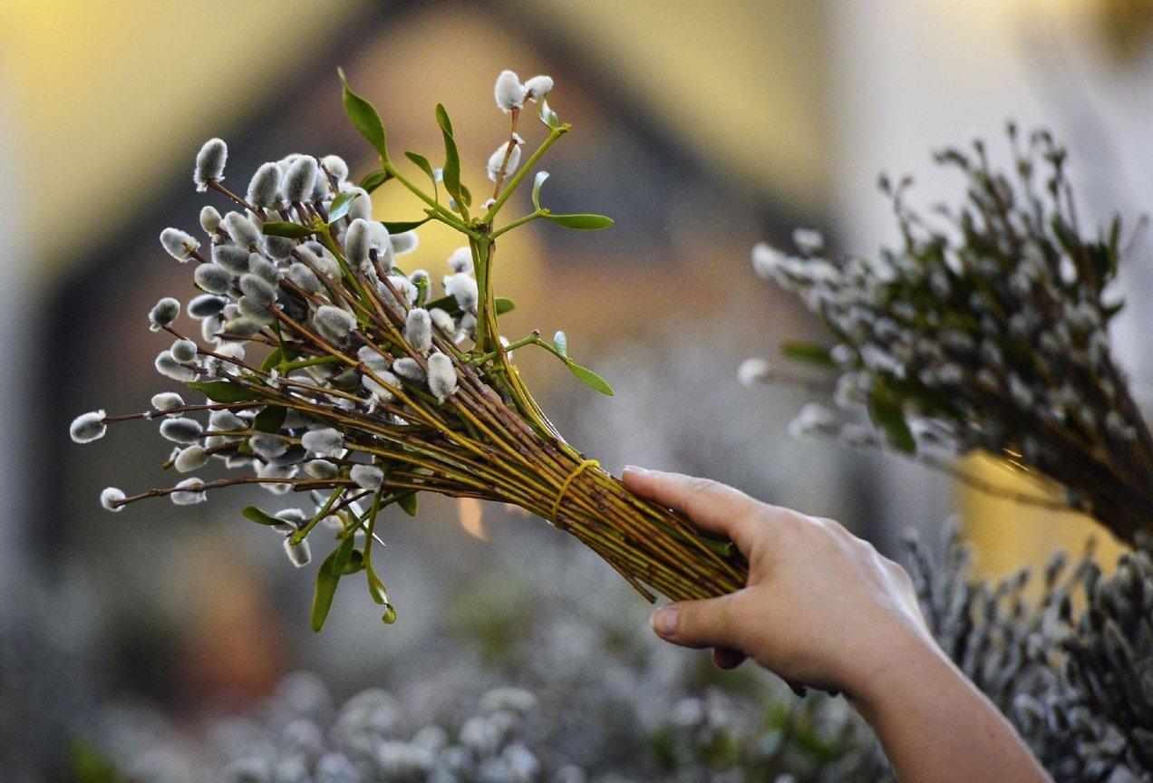 Вербна неділя 2021: дата свята, народні традиції і прикмети