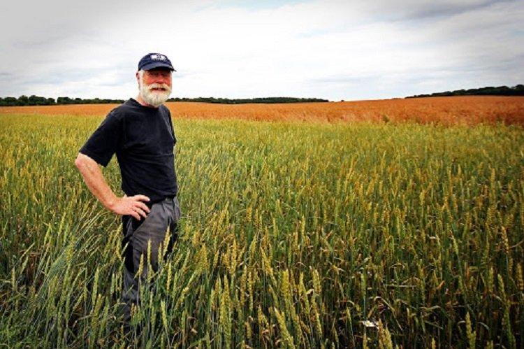 В Україні обкладуть податками селян, які самі обробляють землю і вирощують продукцію
