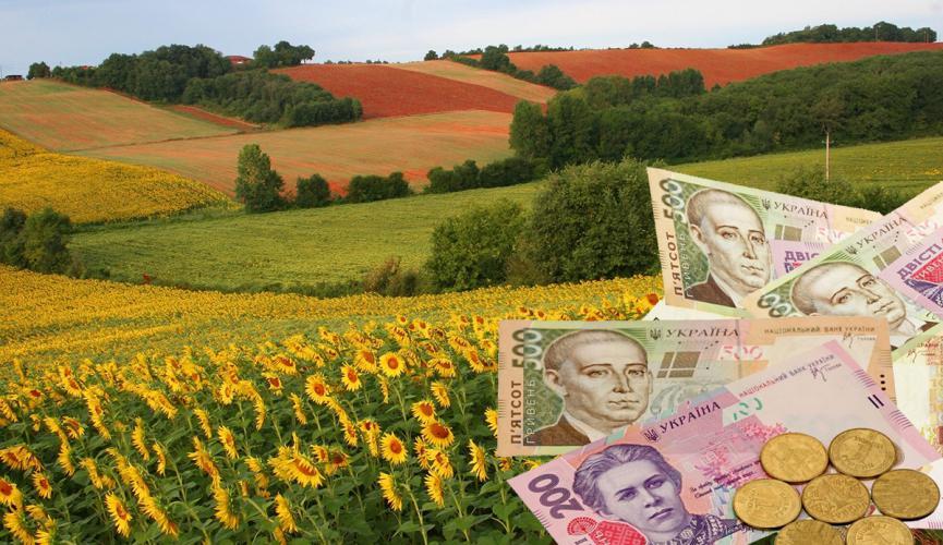 Земельный налог: кому нужно платить, и что будет с землей тех, кто не платит