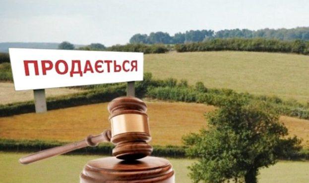 Украинскую землю позволили выставлять на аукционы: аграриям сообщили правила продажи