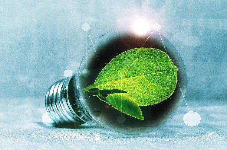 """""""Зеленая"""" энергетика может обернуться для Украины многомилионными убытками"""