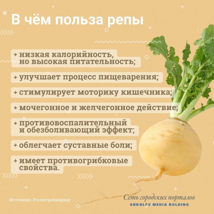 Найкорисніші овочі: дієтологи розповіли, що можна їсти, не побоюючись