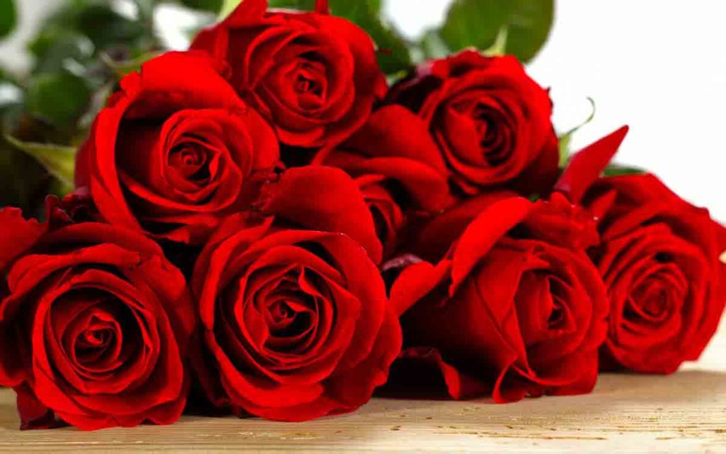 """В Україні подорожчали квіти: троянди по 80 гривень тепер не тільки колються, а й """"кусаються"""""""