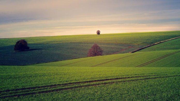 До открытия рынка земли украинцу нужно было умереть, чтобы передать право на землю другому, - министр агрополитики - today.ua