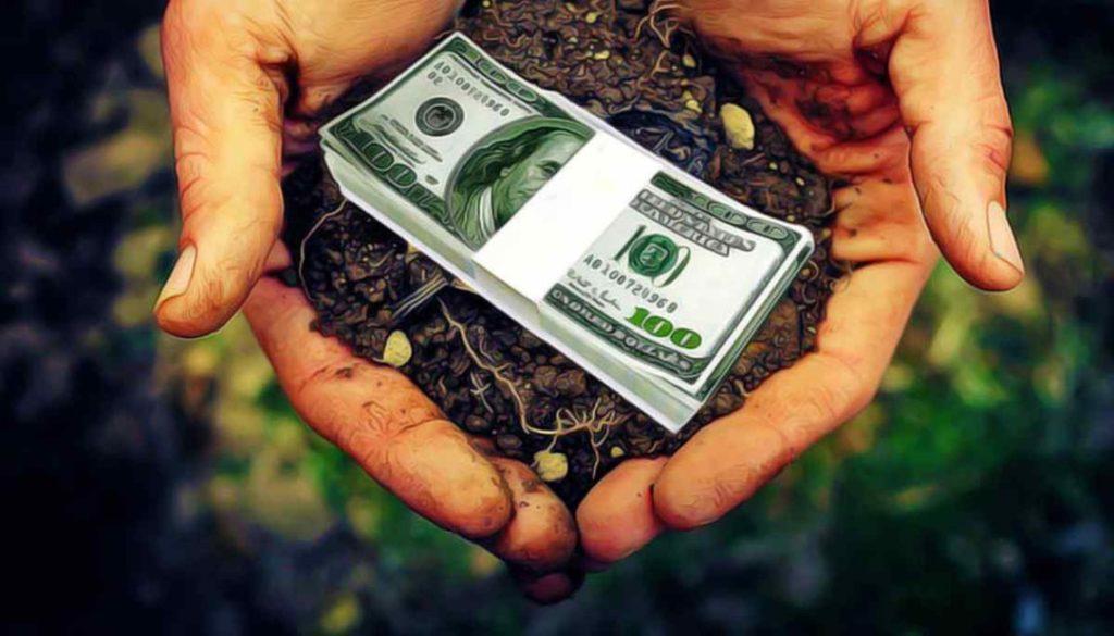 Цена на землю в Украине осенью снизится: эксперты считают, что в начале рынка у владельцев паев завышены ожидания
