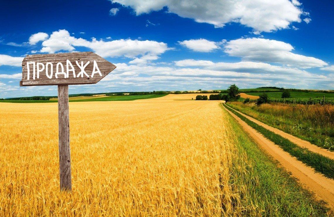 Рынок земли: украинцам сообщили стоимость гектара по опыту первого месяца продаж