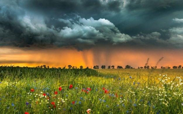 В Украину придет долгожданное похолодание: синоптики рассказали, какие области накроют ливни и грозы     - today.ua