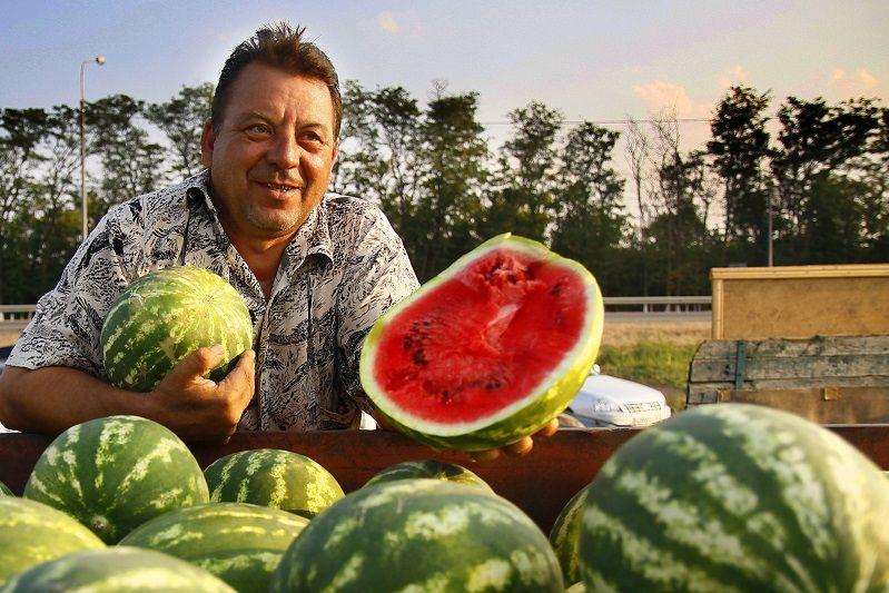 На рынках Украины появились арбузы: сколько просят за первые ягоды