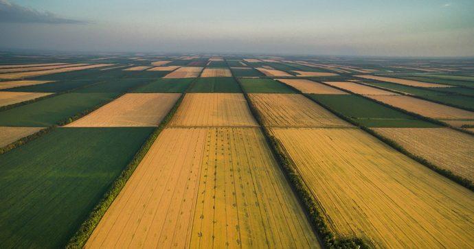 Українцям розповіли, що буде з ціною на землю, і кому не варто поспішати з покупкою