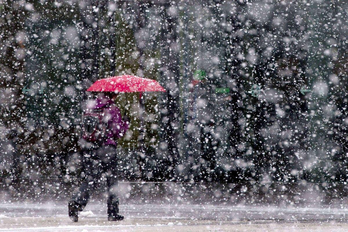 Зима в Украине будет ранней и холодной: синоптики предупредили о первых заморозках в октябре