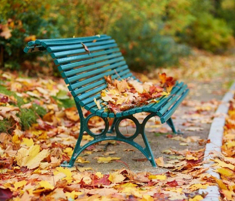 Підуть дощі, а потім вдарять морози: прогноз погоди на осінь для всіх регіонів України