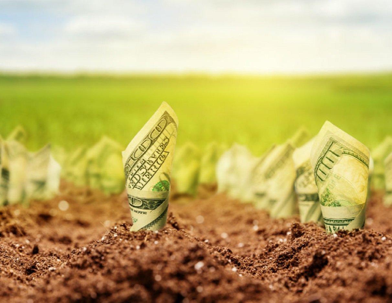 Власників землі в Україні обкладуть новими великими податковими відрахуваннями