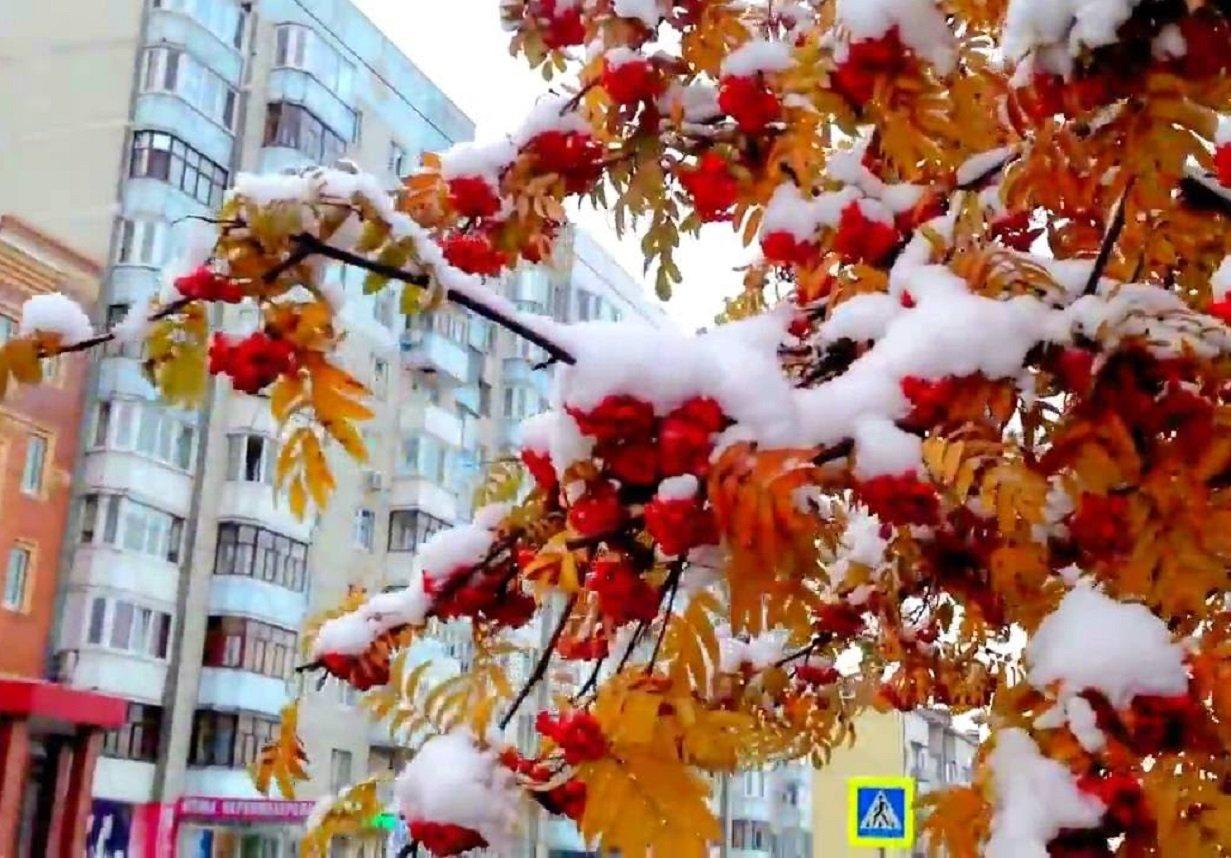 Снігопади почнуться в жовтні: Укргідрометцентр прогнозує холодну осінь в Україні